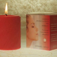VIVALU Air Candle Exotic Mango
