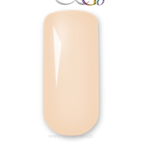 Colour&Go 015 Ivory 8g-CG015